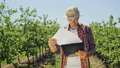 Happy agriculturist looking through papers outdoors among plants in the farm plantation on sunny and 47744439