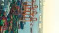 垂直材料东京物流贸易形象时间流逝东京港奥米集装箱码头 47746062