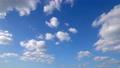青空 ノーマルスピード 47751177