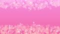 櫻桃粒子 47772401