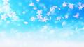 櫻桃粒子 47772404