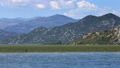 Birds on the famous Lake Skadar in Montenegro 47792730
