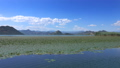 View from moving boat on famous Lake Skadar 47792732