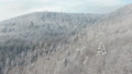Flying over a steep mountainside with snowy trees - aerial view 47798782