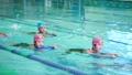 游泳學校形象 47807447