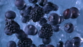 Blackberries and Blueberries. Slow motion. 47954121