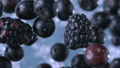 Blackberries and Blueberries. Slow motion. 47954126