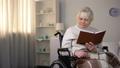 elderly, female, granddaughter 47954793