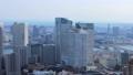 东京的视图 47967955