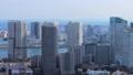 东京的视图 47967959