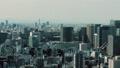 东京的视图 47967964