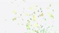 การเต้นด้วยอนุภาคแอลฟาในพายุหิมะ 47985690