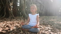 Little child girl meditating alone under banyan tree  48006812
