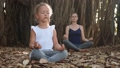 Little child girl with young mother meditating together under banyan tree 48006887