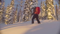 Sunset in the winter forest. A man skiing skitour 48039382