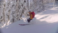 Skitour in Siberia. A man riding down the hill in a snowy forest. 48039402