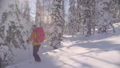 Skitour in Siberia. A freerider riding down the hill in a snowy forest. 48039419