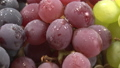 3 kinds of grapes (zoom up shooting) 48073177