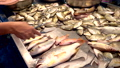 Traditional Thai sea food market, with fresh seafood 48086594