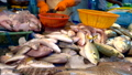 Traditional Thai sea food market, with fresh seafood 48086595