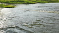 Rapid current of river in summer day 48118075