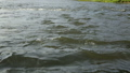 Rapid current of river in summer day 48118077
