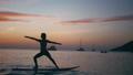 yoga, female, balance 48158636
