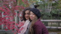 International Friends in Kyoto with Fall leaves. 48202537