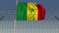 깃발, 기, 흔들다 48253371
