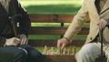 年配 仲良し チェスの動画 48279653