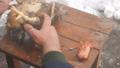 烧开的水 碗 冬天 48318115