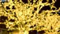 Tree was decorates garlandswit golden bulbs. Christmas street lights. Close-up view, blur. 48436131
