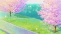 桜と舞い散る花弁 48455992
