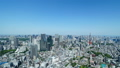 東京風景・タイムラプス・春・新緑と青空・パン 48468848
