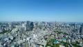 東京風景・タイムラプス・春・新緑と青空・FIX 48468849