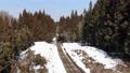 森の中を走る只見線の列車 48493131