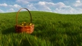 Basket with dyed easter eggs among green grass 3D 48519418