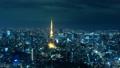 東京夜景/六本木より東京タワー方面 48523140