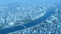 東京展望/スカイツリーより台東区/隅田川-隅田公園方面 48523274