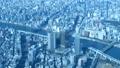 東京展望/スカイツリーより墨田区役所方面 48523918