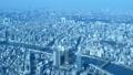 東京展望/スカイツリーより墨田区役所方面 48523920
