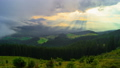 The Mountain Forest on Background of Sunset 48567152
