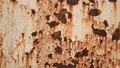 Rust Rust Rusted Rusted paint Degraded texture Background Rust Iron Metal Housing paint 48567455