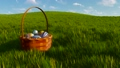 Basket with dyed easter eggs among grass Close-up 48580335