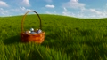 Easter basket with colorful eggs among green grass 48580337