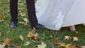 The bride and groom strolling through the autumn forest. View from top of legs walking in the grass 48590562