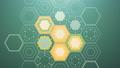 Abstract Digital Hexagons, Loop 48603184