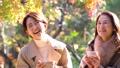 秋天秋葉母親女兒父母和兒童Matcha圖像 48612131