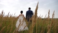 happy bride in a beautiful white dress and bridegroom are walking on grass with ear. teamwork of 48715039