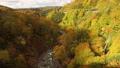 10月 新玉川温泉界隈から展望した紅葉風景 48723741